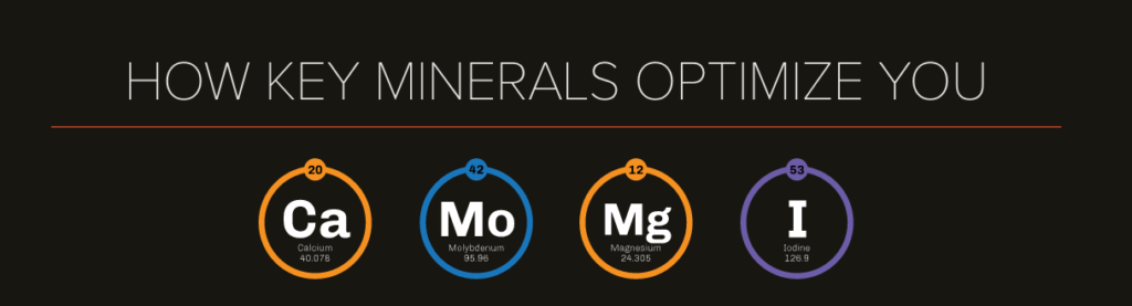 onnit key minerals reviews