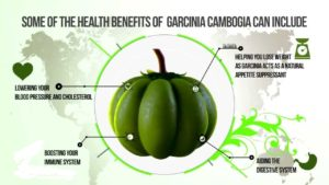 garcinia cambogia health benefits