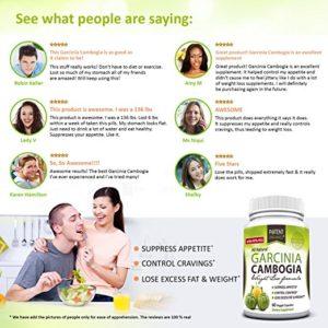 potent organics garcinia cambogia review