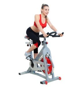 best spin bikes for home gym under 300 dollars