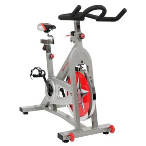 best spin bike under 300 dollars