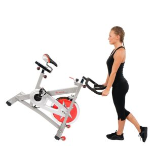 best indoor spin bike under 300