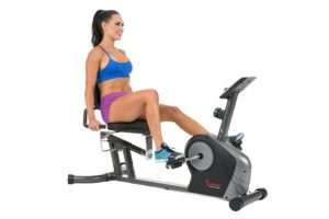 what is the best recumbent bike for home under $200