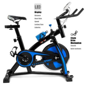 best home indoor spin bike under $300