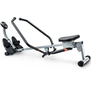 best indoor rower under 100 dollars